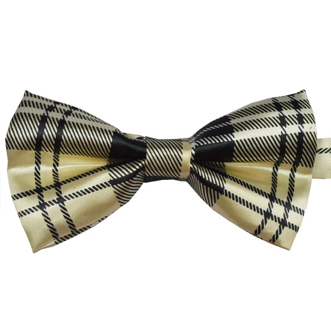 gold_member_bow_tie