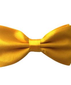 tulip_tree_yellow_bow_tie_rack_australia