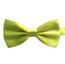 wild_willow_green_bow_tie_rack_australia