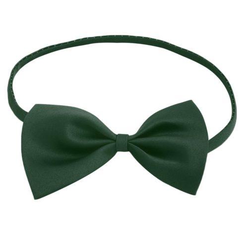 green_butterfly_bow_tie