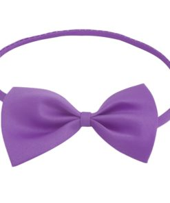 purple_butterfly_kids_bow_tie